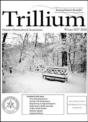 2017-2018 Winter Trillium