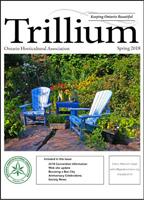 2018 Spring Trillium