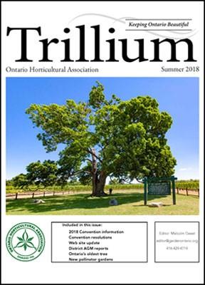 2018 Summer Trillium Cover