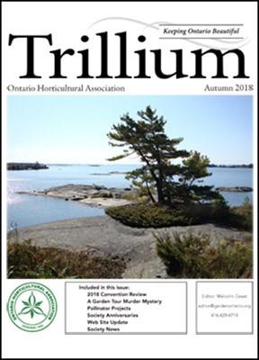 2018 Autumn Trillium Cover