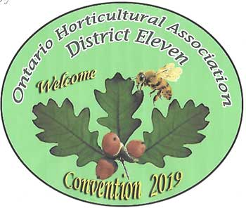 2019 Convention Logo
