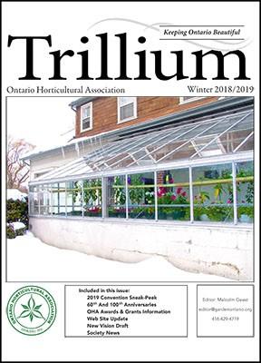 2019 Winter Trillium Cover