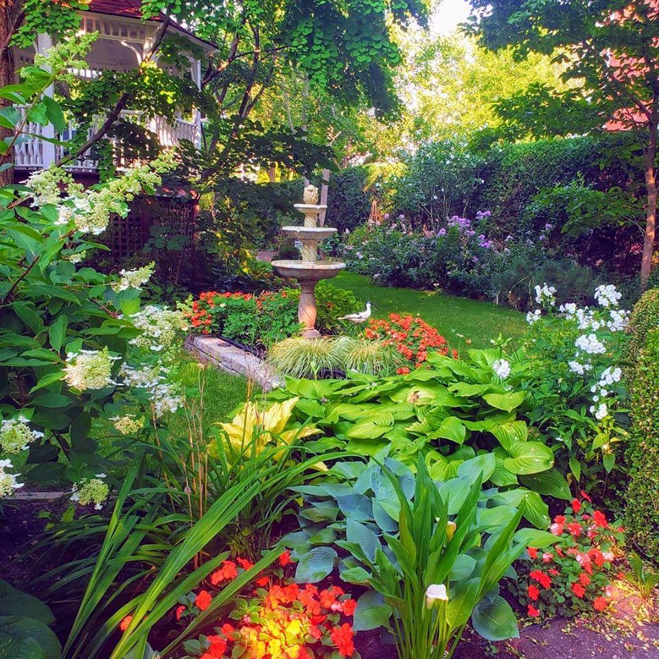 Kathys Garden photo by Joy Davis