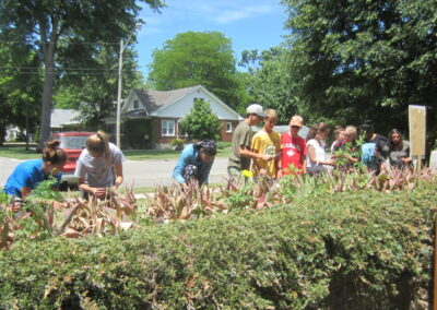 Grade 8 students planting a memorial garden, K. Smyth
