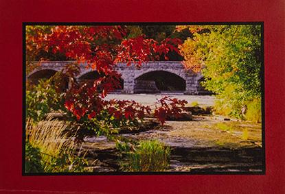 oha notecards, fall colour design