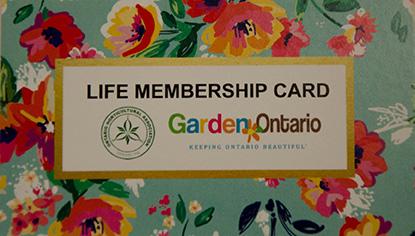 life member wallet card