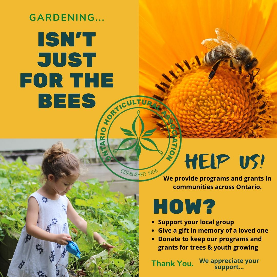 Gardening isn't just for the bees. Help us to provide programs and grants in Ontario. Donate today.