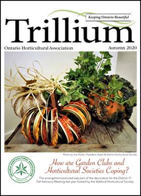 2020 Autumn Trillium Cover