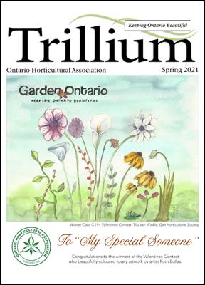 2021 Spring Trillium