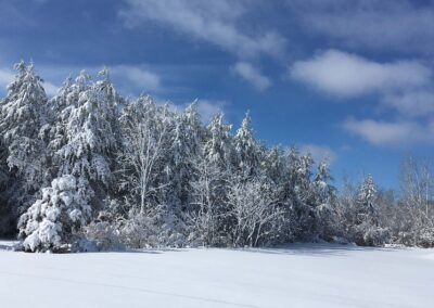 Winter Near Munster Ontario, A. Clark-Stewart, 2019